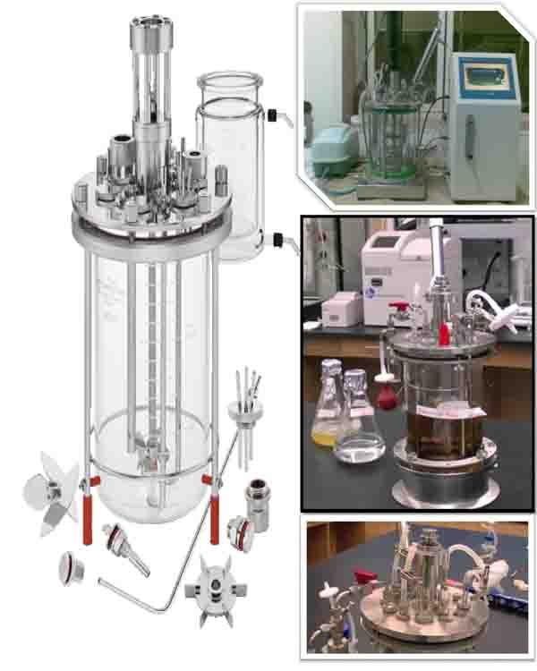bioreactor fermenter بایوراکتور فرمنتور